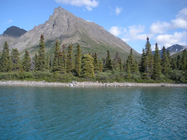 Twin lakes alaska fishing for Twin lakes fishing report